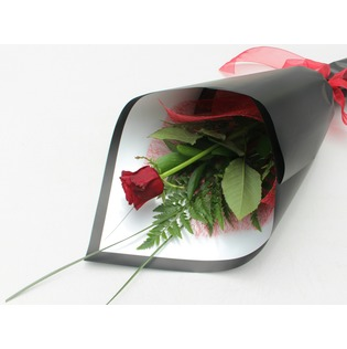 Kamo Florist - 1 Red Rose