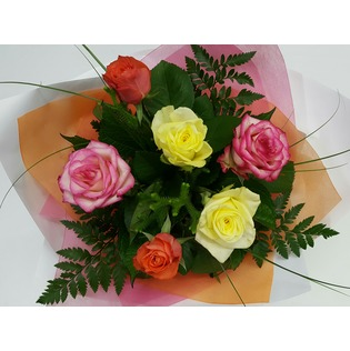 6 Coloured Roses